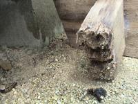ボロボロになってしまった花台の足